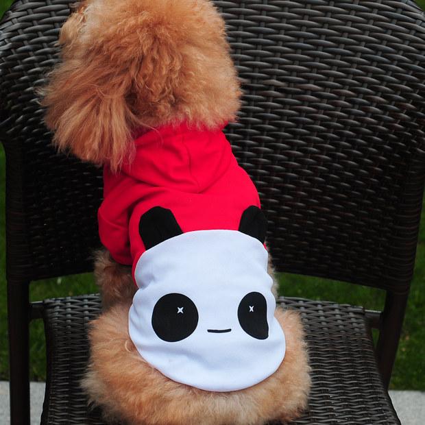 天猫 狗狗夏装泰迪衣服春装贵宾博美比熊衣服幼犬小狗宠物服装t恤 8.